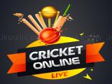 Play Cricket online now